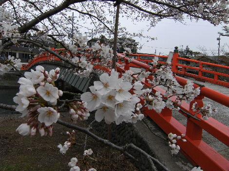 18きっぷで、京都へ_f0082141_16172870.jpg