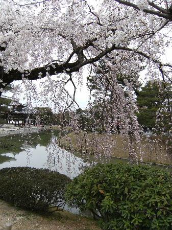 18きっぷで、京都へ_f0082141_16283893.jpg