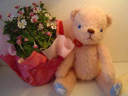 teddy bear story vol.4_d0141953_8245571.jpg