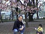 桜に誘われて_b0096957_2034581.jpg