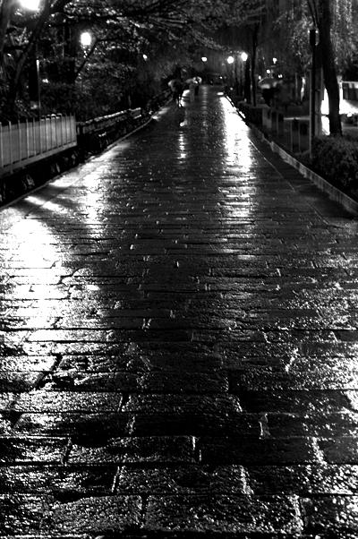 ほとんど夜桜の旅_d0028499_19313013.jpg