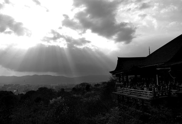 ほとんど夜桜の旅_d0028499_19415224.jpg
