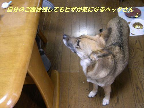 幼馴染み_b0025947_19302350.jpg