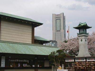 桜の季節_f0062790_0563228.jpg