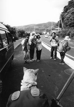 第7話 カメラマンがいっぱい~土佐路2001年GWの旅_c0049299_13443344.jpg