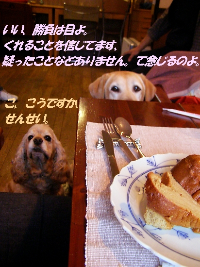 b0067012_1832479.jpg