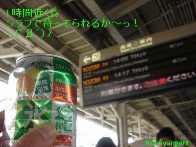 b0070154_1233677.jpg