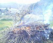 生木の燃やし方_c0050063_7412799.jpg