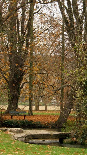 パリ郊外の森へ!2_f0119071_15264499.jpg