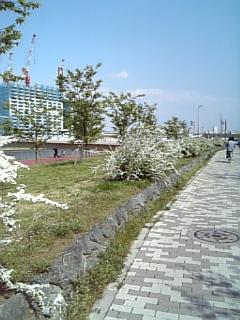 隅田川沿い_c0103712_22211425.jpg
