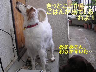 b0113725_14163262.jpg
