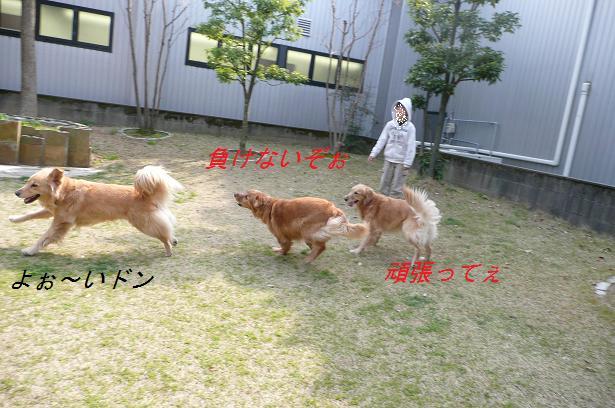 f0114128_035887.jpg