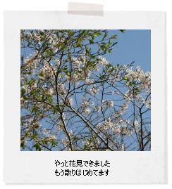 f0148331_19574231.jpg