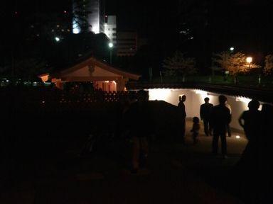 福井城址の夜桜ライトアップ_d0079440_21113665.jpg