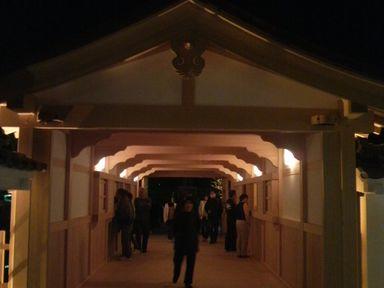 福井城址の夜桜ライトアップ_d0079440_2113073.jpg