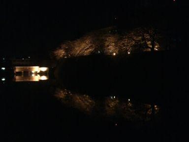 福井城址の夜桜ライトアップ_d0079440_21182119.jpg