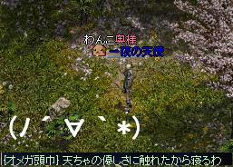 f0140642_3124343.jpg