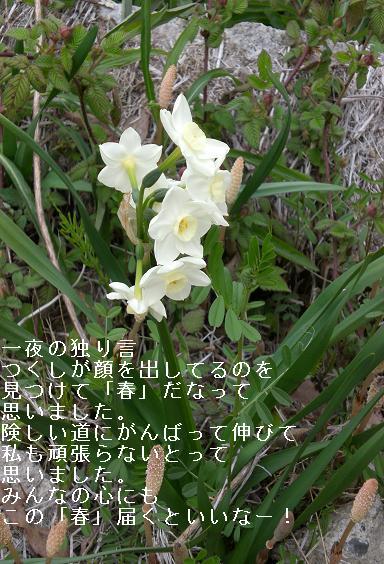 f0140642_324358.jpg