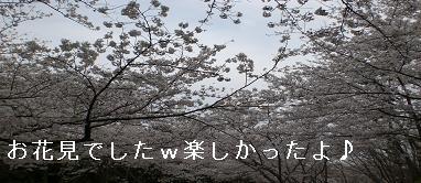 f0140642_38018.jpg