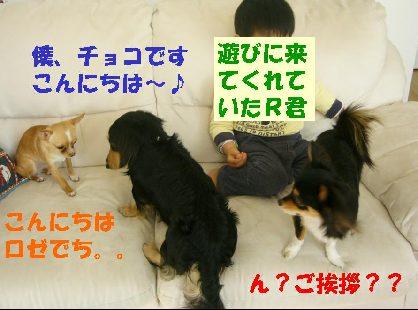 d0089861_22335262.jpg