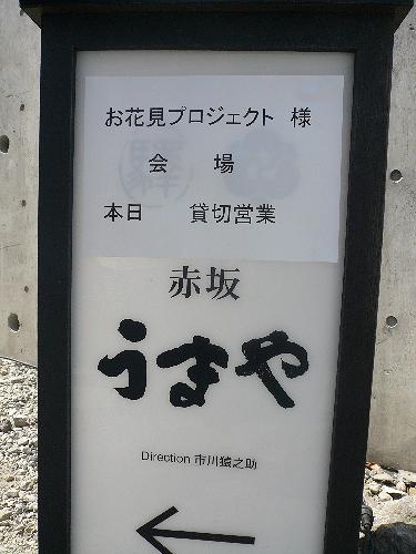 『赤坂 うまや』 IN まっつー隊長主催 お花見プロジェクト ..。.゚。*・。♡ _a0053662_215949.jpg