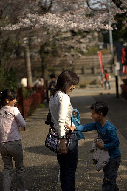 桜さんぽ_d0153168_2415329.jpg
