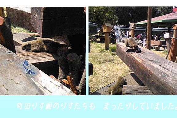 f0016868_2064539.jpg