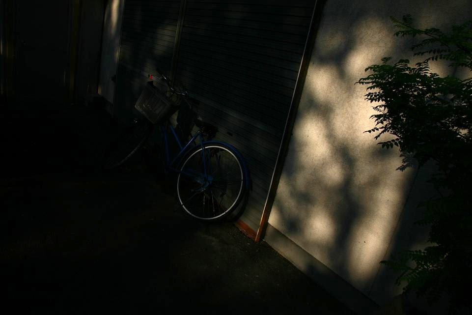 光の示す方へⅧ_c0129671_2224146.jpg