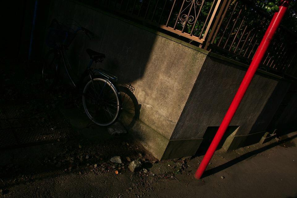 光の示す方へⅧ_c0129671_2226512.jpg