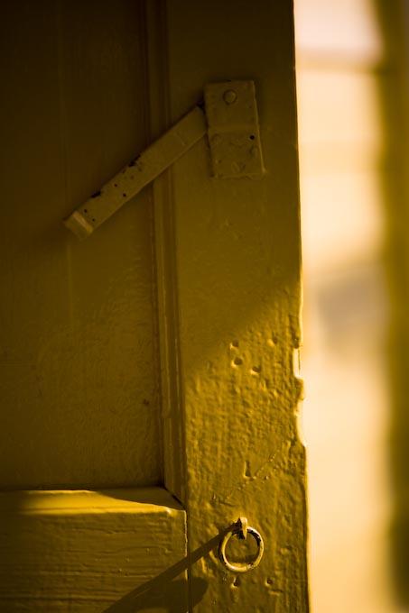 幸せの黄色い・・・_c0150383_211471.jpg