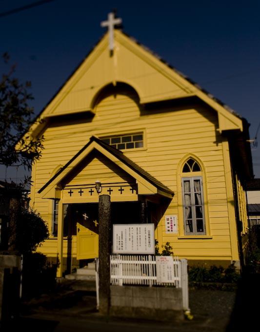 幸せの黄色い・・・_c0150383_21185762.jpg