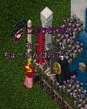 b0096491_8351053.jpg
