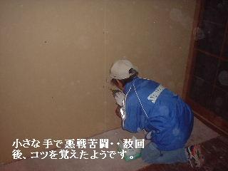 解体作業_f0031037_17324096.jpg