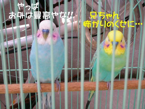 f0132055_0103826.jpg