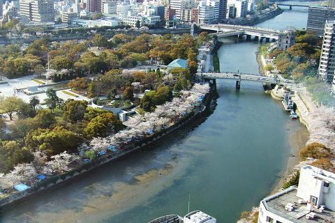 平和記念公園の桜_e0045768_22572950.jpg