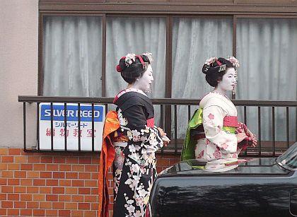 京都・・・花巡り2♪_d0078486_1118214.jpg
