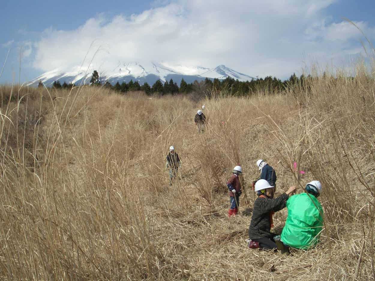 富士山国有林での森づくり・・・の打合せ_f0141310_2352476.jpg