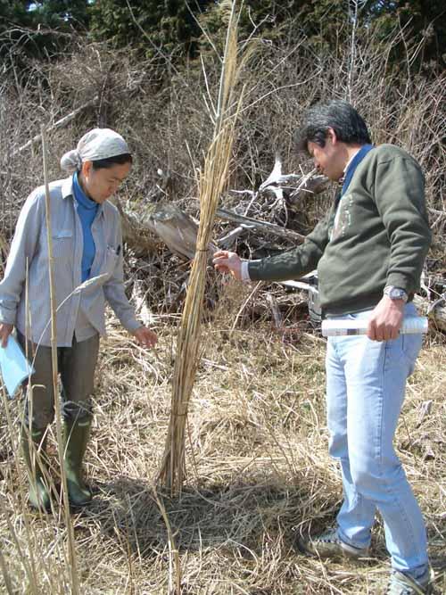 富士山国有林での森づくり・・・の打合せ_f0141310_23561732.jpg
