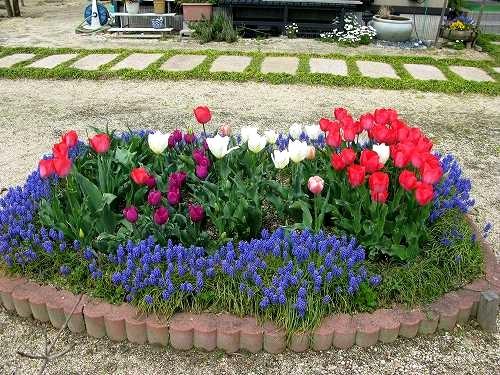 庭で_e0072023_19595585.jpg