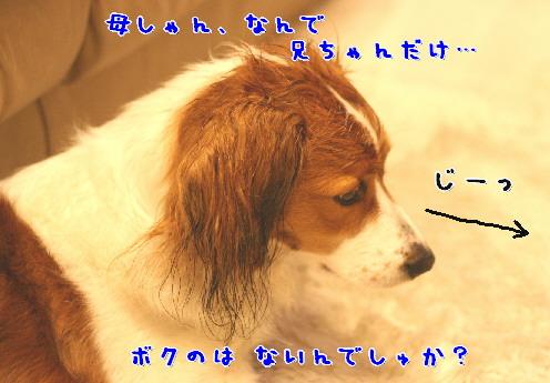 d0013149_711183.jpg