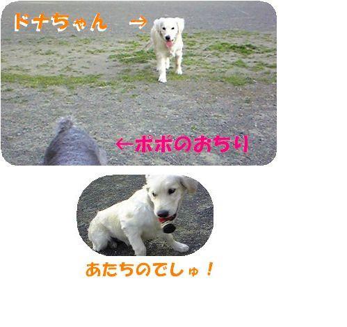 d0048951_2324093.jpg
