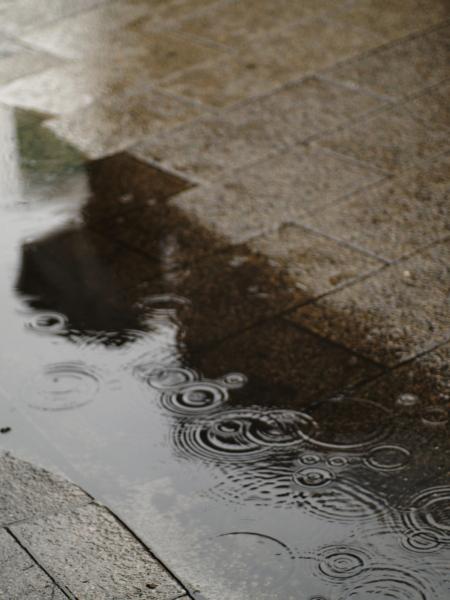 f0117681_19425168.jpg