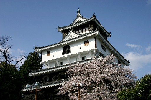 岩国城、桜の錦帯橋を望む (山口)_b0067283_0452565.jpg
