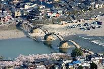 岩国城、桜の錦帯橋を望む (山口)_b0067283_0461558.jpg
