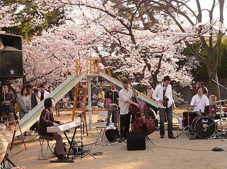 桜祭り&夙川音楽街道~♪_d0078486_0494048.jpg