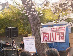 桜祭り&夙川音楽街道~♪_d0078486_0503022.jpg