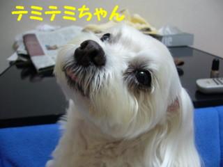 f0145192_15161214.jpg
