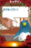 a0068693_0225977.jpg