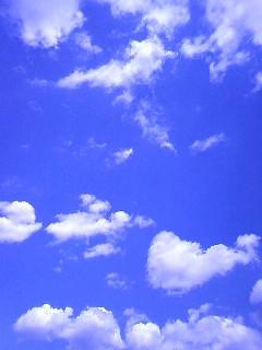 f0069505_20105299.jpg