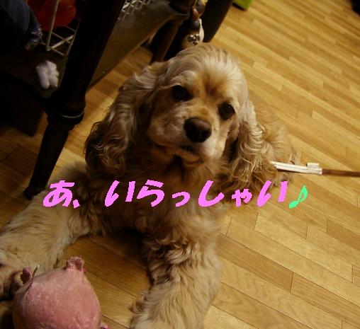 b0067012_950863.jpg